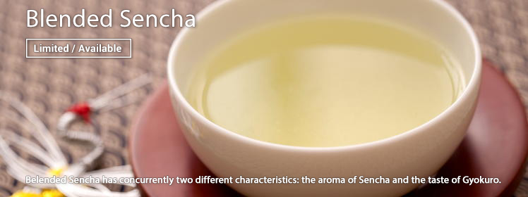Blended Sencha is Now Available