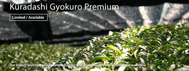 Kuradashi Gyokuro Premium  (Now Available)