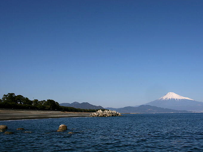 View of Mt. Fuji from pine grove at today's MIHO area.